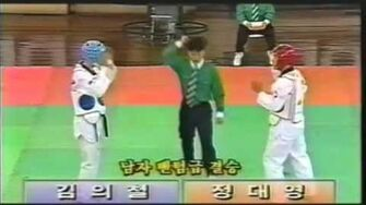 Taekwondo Sparring Terminology Korean English