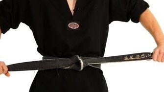 Taekwondo Belt Levels Taekwondo Training