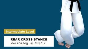 Taekwondo 2D - Rear Cross Stance ( 뒤 꼬아서기 dwi koa sogi )
