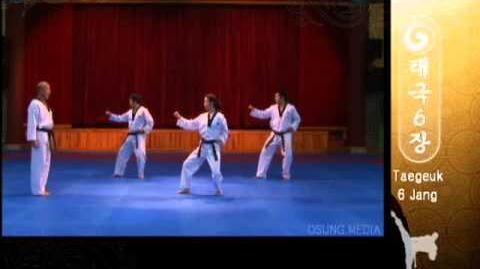 Grand Master Kyu Hyung Lee - WTF Taegeuk Yuk Jang