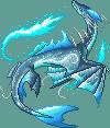 Alayi oceane dragon adult