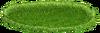 GrassgreenBIG1