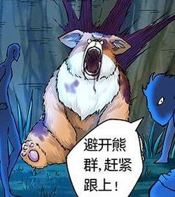 Fox Bear