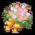 Pasca's Bouquet