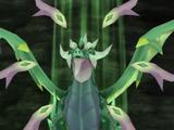 Chroma-Drachen