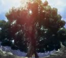 Weltenbäume