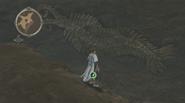 Cambria-HöhleFossil