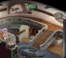Chat's Hut