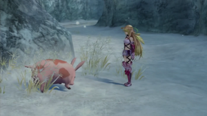 Schweininchen Xillia