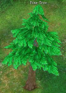File:Pinetree.jpg