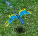 Stinging Beak