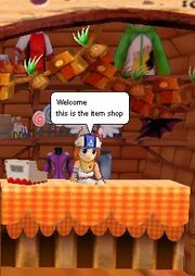 Park Shop NPC