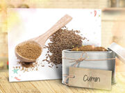 Talia-in-the-kitchen-flipbook-spice-rack-8