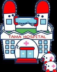 Tama hospital