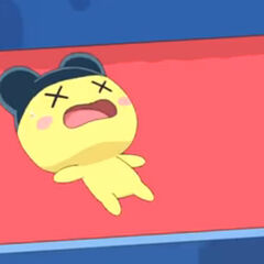 Mametchi fainted