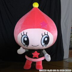 Official mascot Himespetchi costume