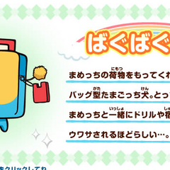 Profile card on Tamagotchi channel