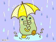 Kuchipatchi rain
