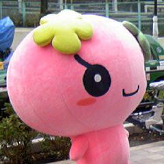 Violetchi costume