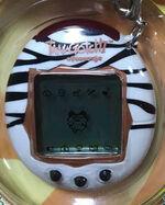 V2 Zebra
