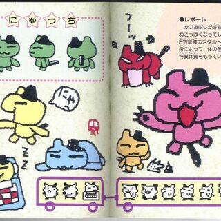 Nyatchi's various colors