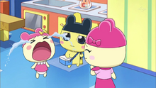 Chamametchi screaming