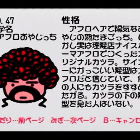 Nintendo 64 profile.
