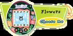 V4 Contest Flowers