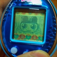 Close-up of Tamagotchi Friends with color icon background