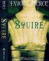 Squire usbp reissue.jpg