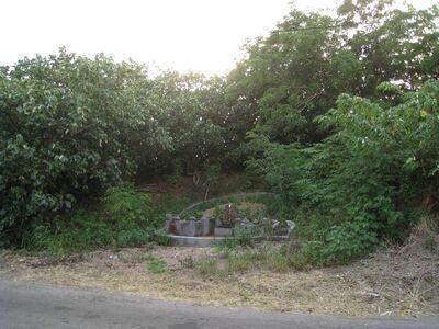 圖片8位於公司田溪旁的外城岸