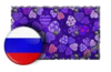 Spring Showdown Team Russia Paint