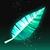 Avian Feather