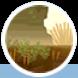 Bleak Desert 04