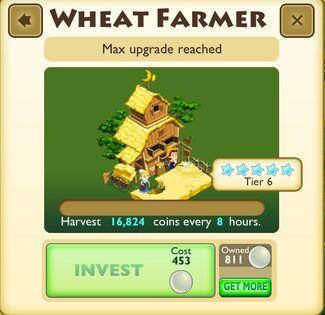 Wheat farmer 6