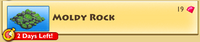 Decoration - Moldy Rock