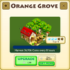 Orange Grove Tier 4