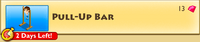 Decoration - Pull-Up Bar