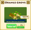 Orange Grove Tier 2
