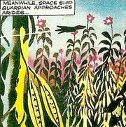 Arides plants Emissaries of Jevo