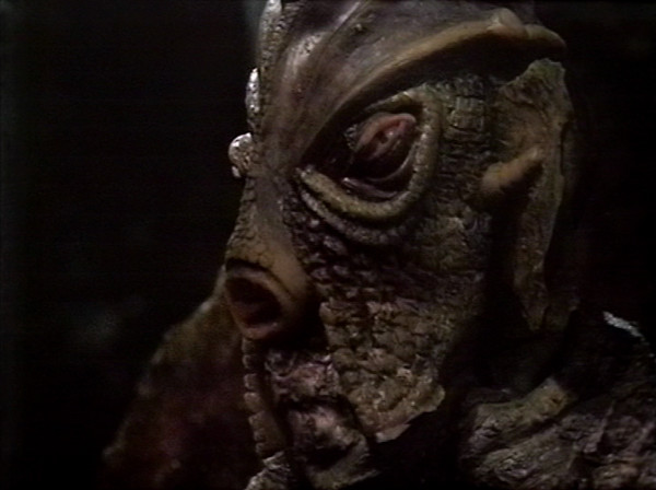File:Old Silurian.jpg
