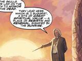The Path of Skulls (comic story)