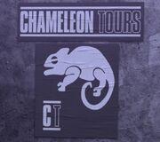 Chameleon Tours