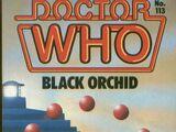 Black Orchid (novelisation)