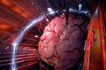 Ood Brain.jpg