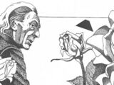 Roses (short story)