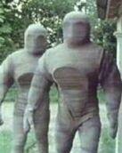 Osiran Service Robots