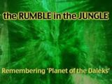 The Rumble in the Jungle (documentary)