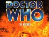 The Burning (novel)