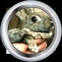 Badge-2280-3